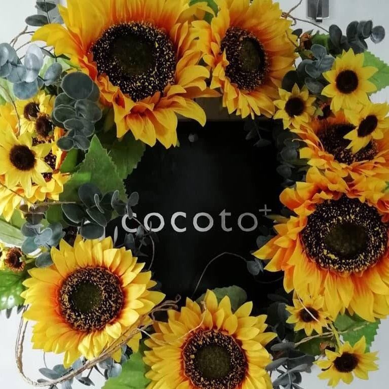 cocoto+